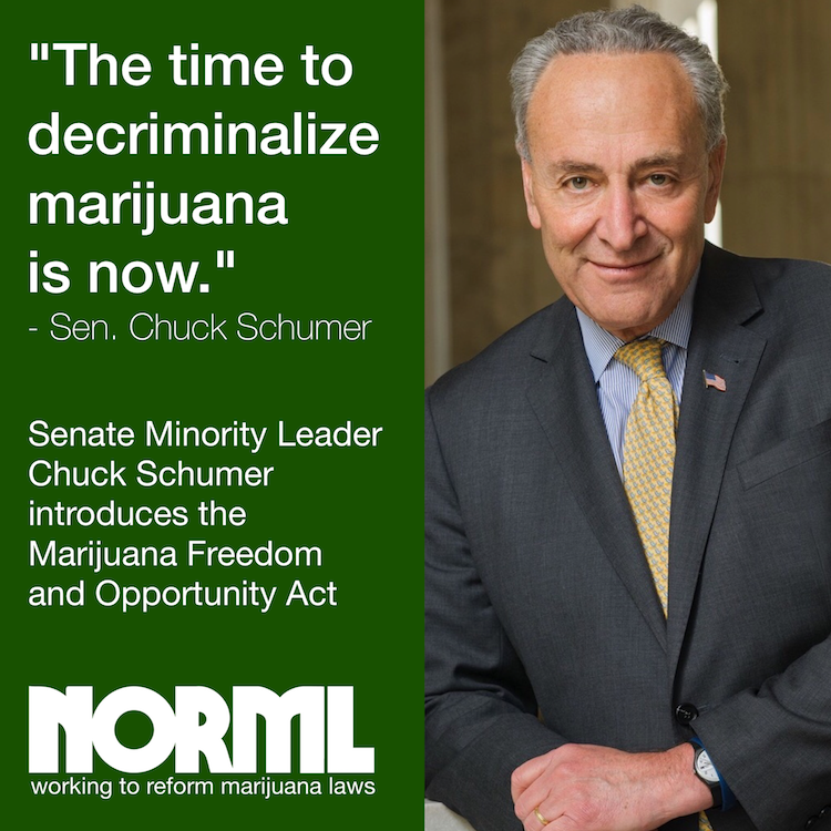 Senator Chuck Schumer introduces the Marijuana Freedom and Opportunity Act