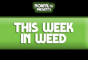 This Week in Weed