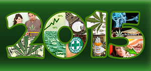 2015: The Year In Review - NORML's Top 10 Events That Shaped Marijuana Policy
