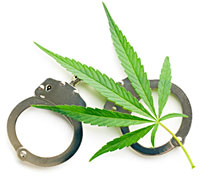 Cannabis Penalties